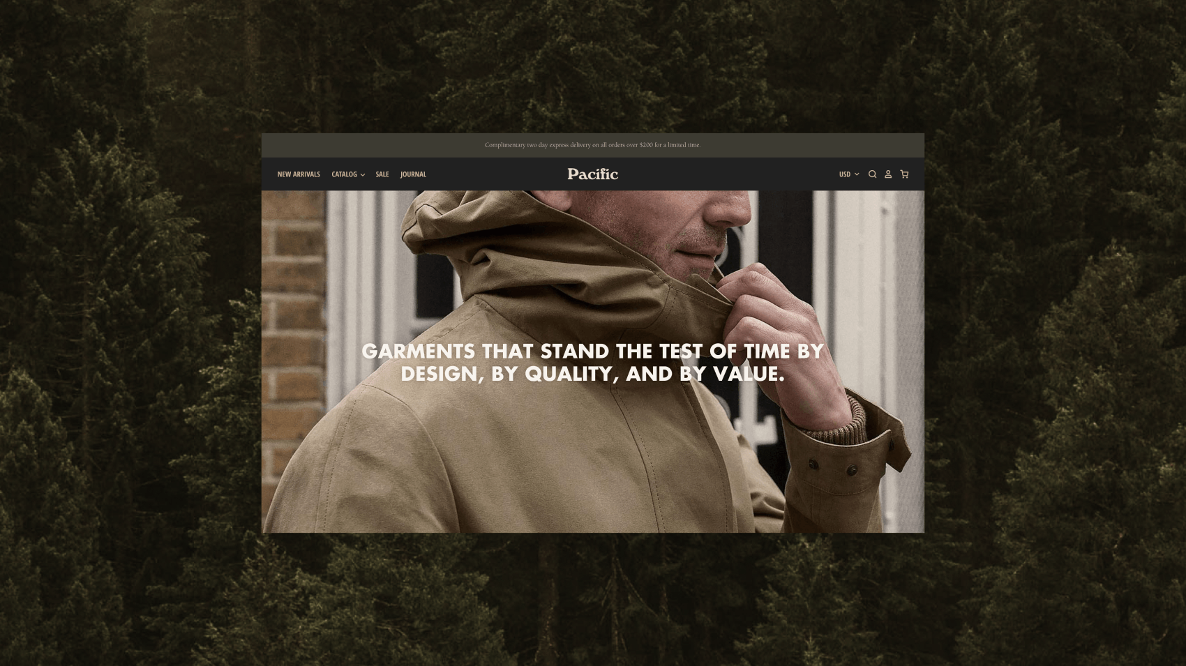 Pacific: The perfect Shopify theme to help you grow