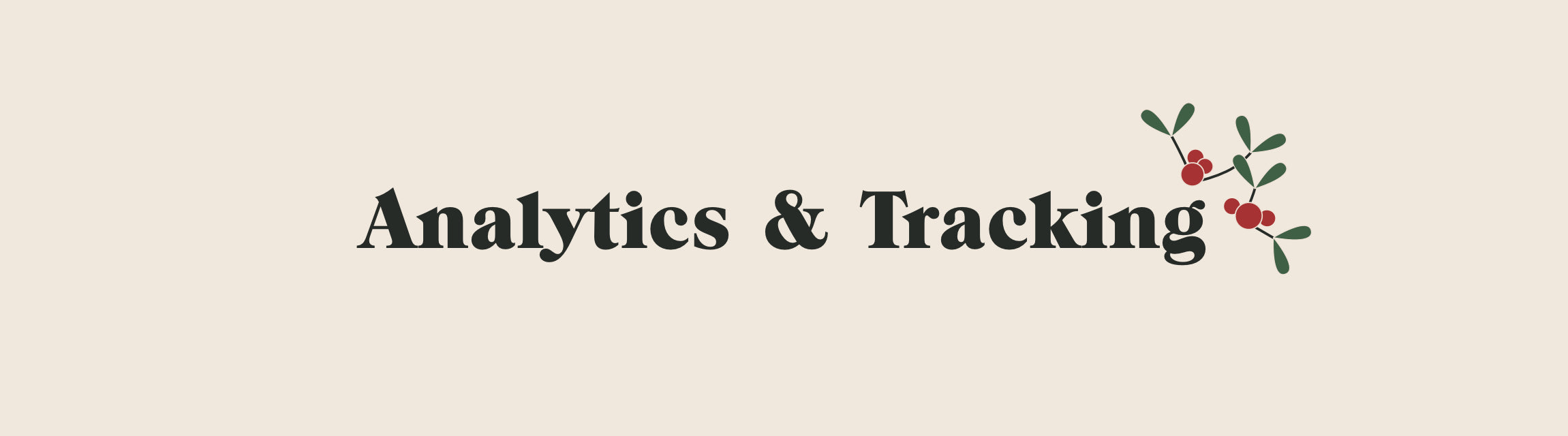 Analytics & Tracking title with mistletoe icon