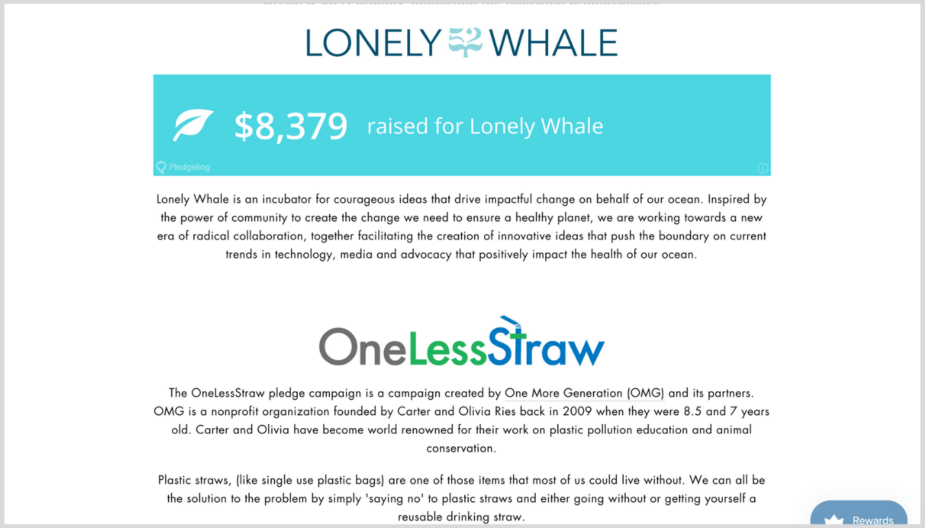 Screenshot showing the organizations Ocean and Co. donate to