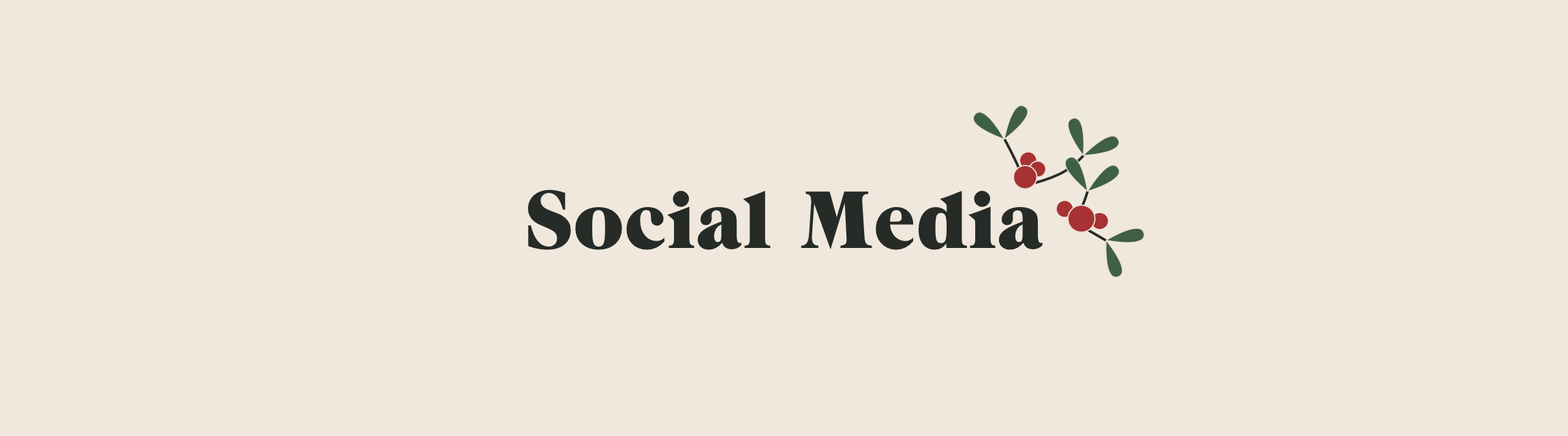 Social Media title with mistletoe icon
