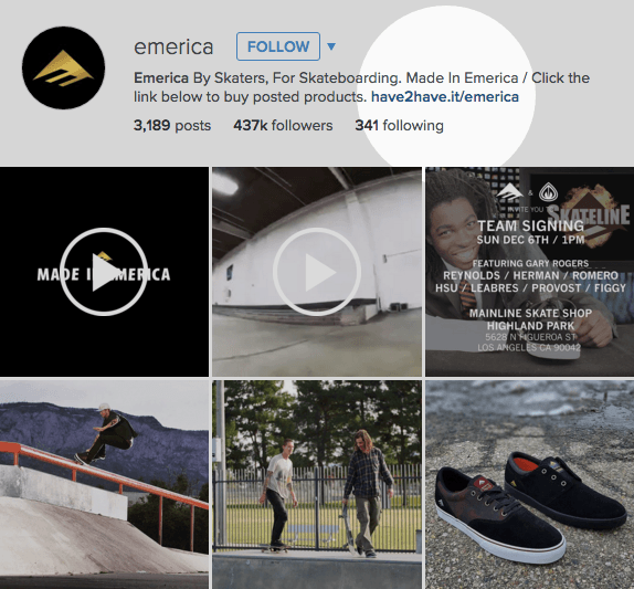 Emerica Instagram page featuring 4 images and 2 videos