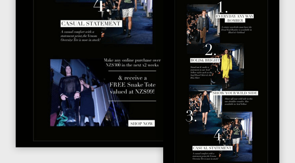 Stolen promotional email featuring editorial runway imagery