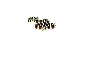 California Kingsnake (Lampropeltis californiae)