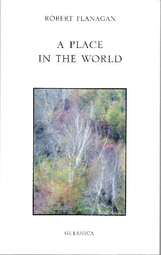 A Place in the World by Robert Flanagan