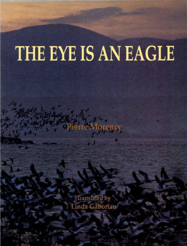 The Eye is an Eagle: Nature Stories from the New World by Pierre Morency