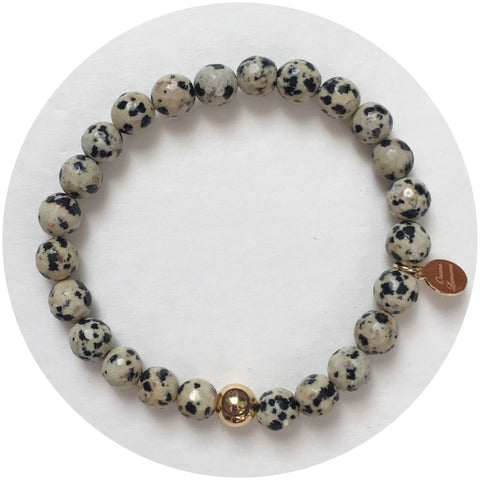 Mens Dalmatian Jasper with Gold Accent
