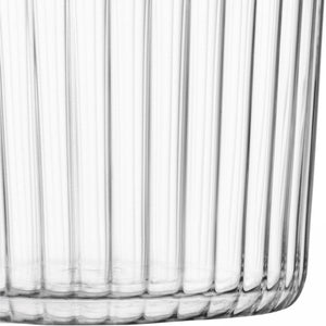 LSA Gio Textured Tumblers (set of 4)