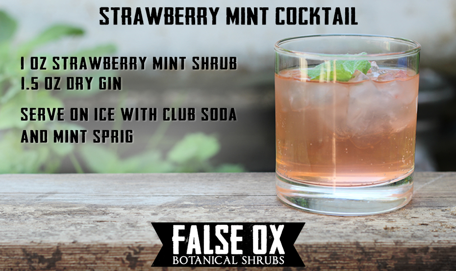 False Ox Strawberry Mint Shrub - Berry Fresh Cocktail