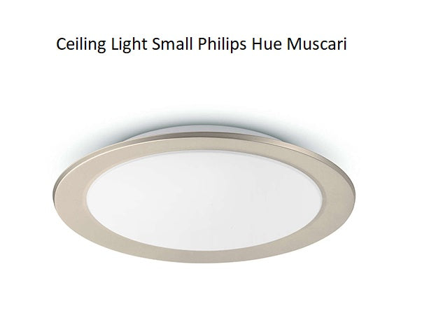 Ceiling_Light_Small_Philips_Hue_Muscari_HUE236601_PROFILE_PIC_S3FV2XBS7OTU.jpg