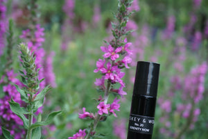No. 20 Serenity Now: Lavender & Sandalwood Essential Oil Fragrance