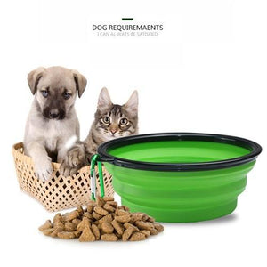 dog and cat bowls