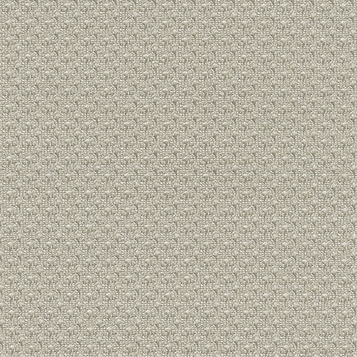 Grey Micro Mesh (A) Knit Fabric