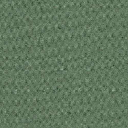 Sage Own Skin Double Brushed Poly Lycra Jersey Knit Fabric