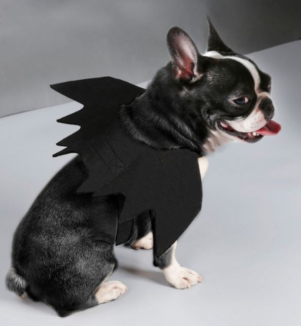 Pet Halloween Bat Wings