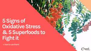 5 Signs of Oxidative Stress & 5 Superfoods to Fight it (+How to Use Them!)