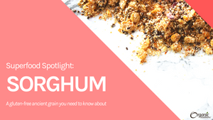 Superfood Spotlight: Sorghum