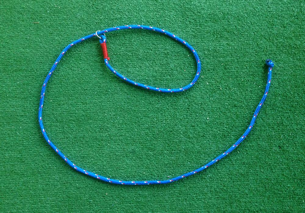 Dog Leash - Small - Blue
