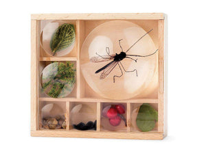 Great Outdoors Magnifying Bug Box