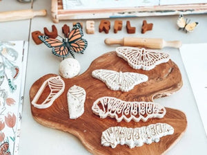 Monarch Butterfly Lifecycle Cutter