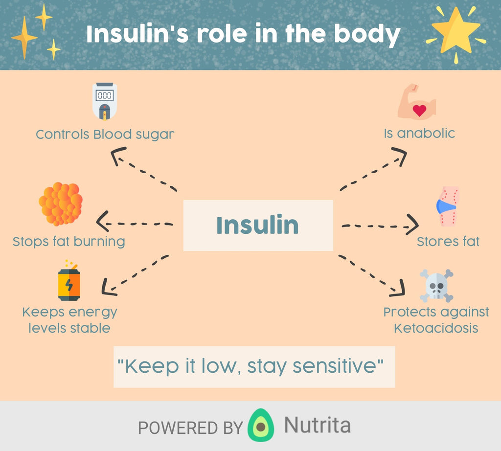 A Guide to Insulin, Insulin resistance and more…