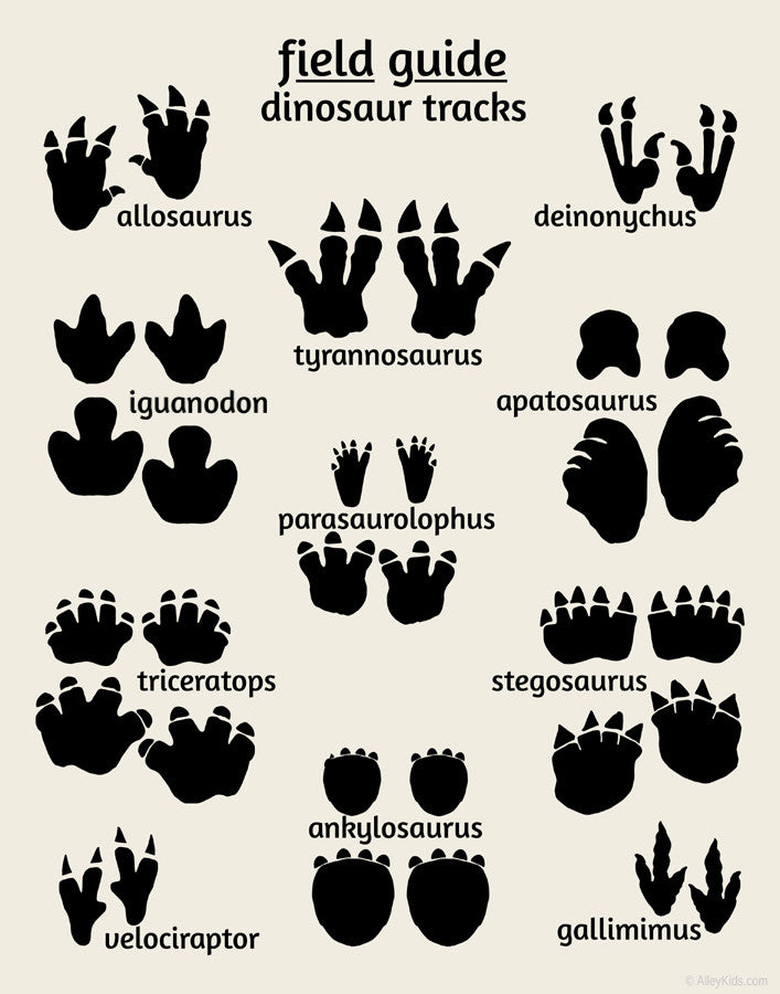 photograph regarding Printable Dinosaur Footprints named Dinosaur Tunes Poster, Business Specialist Sequence