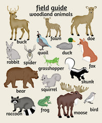 Woodland Animal Poster, Nursery Art