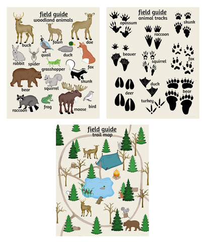 Woodland Field Guide, set of 3