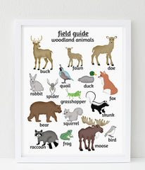 Woodland Animal Poster, Nursery Art print