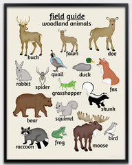Woodland nurser art, animal poster