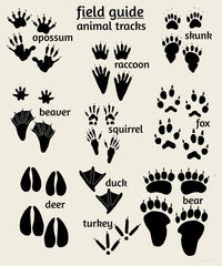 Woodland nursery art, animal tracks