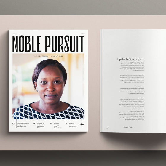 Noble Pursuit | Volume One: Heal