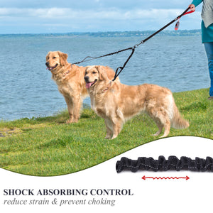 VIVAGLORY New Double Dog Leashes