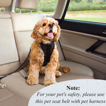 Load image into Gallery viewer, VIVAGLORY New Dog Seat Belt