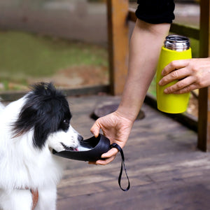 VIVAGLORY Stainless Steel Dog Water Bottle