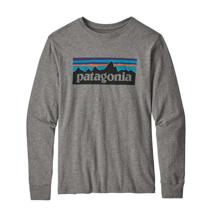 Patagonia boys' ls graphic organic tee, gravel heather