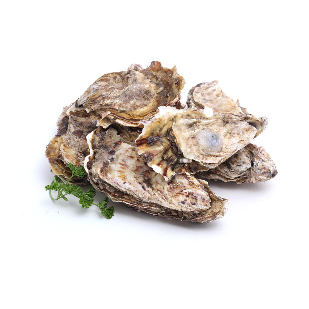 Fanny Bay Oysters