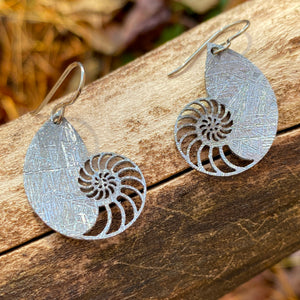 Meteorite Nautilus Earrings
