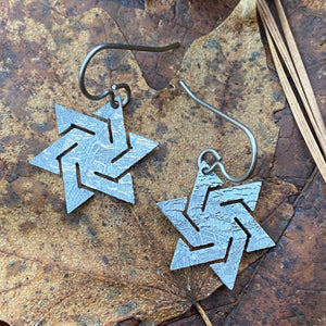 Meteorite Star Earrings
