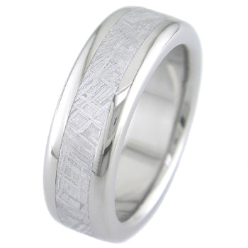 titanium radius maximus ring with meteorite inlay