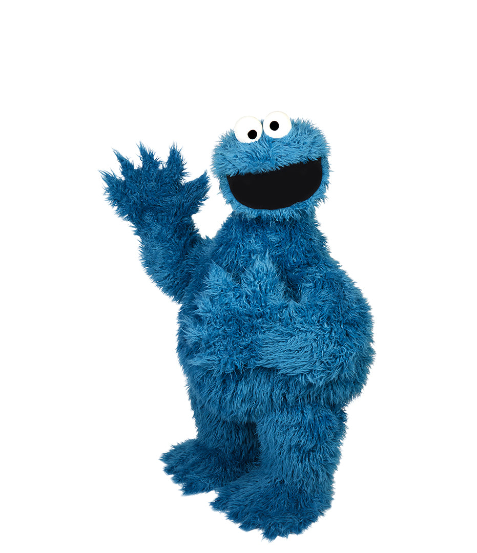 CookieMonster0045_updated_2000x.jpg?v=15