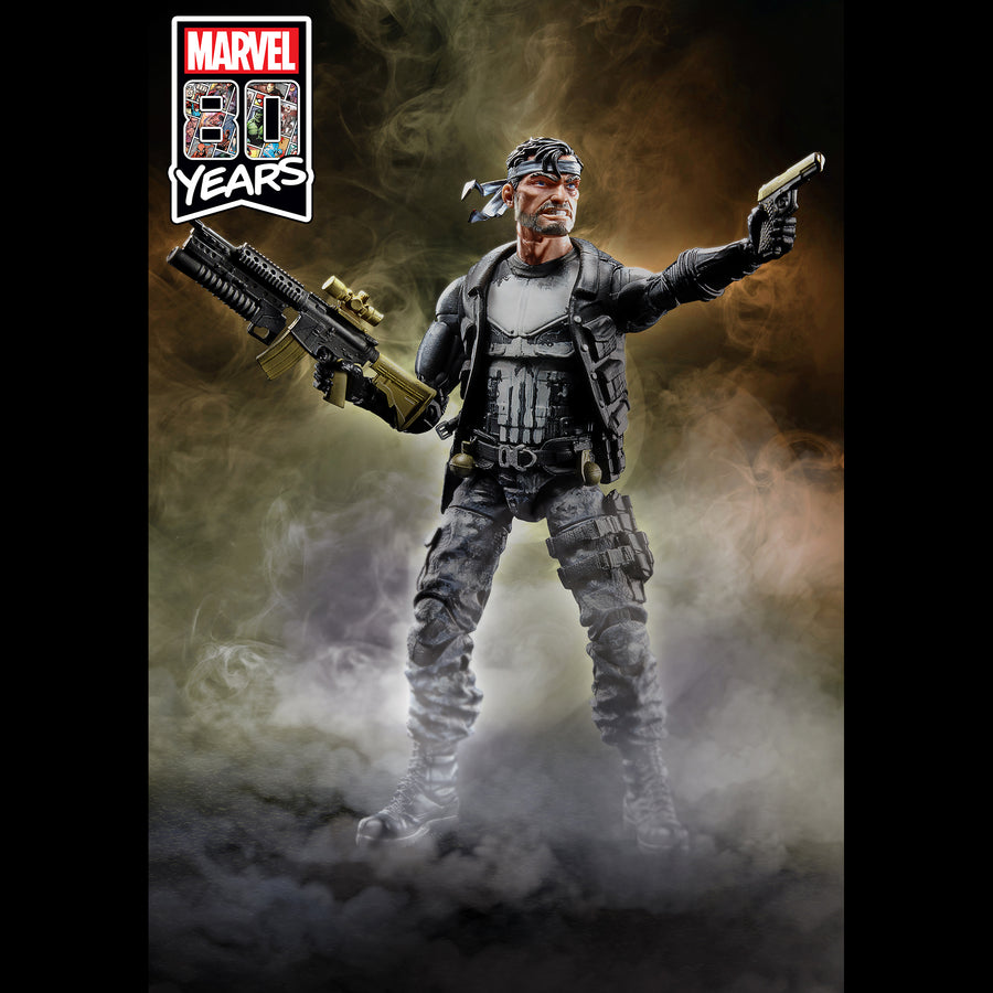 Marvel Legends Series The Punisher Figure