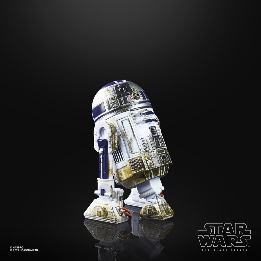 Star Wars The Black Series Artoo-detoo (R2-D2) (Dagobah) Figure