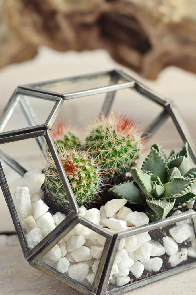 Zinc terrarium / candle holder: square