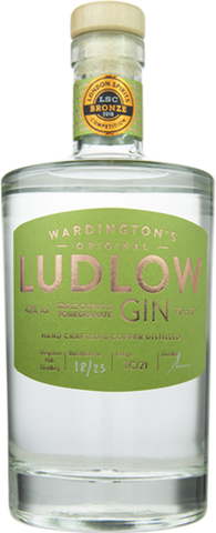 Ludlow double citrus and pomegranate gin.