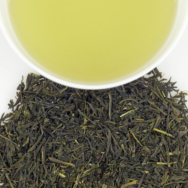 Japanese Sencha, 1lb Loose Leaf