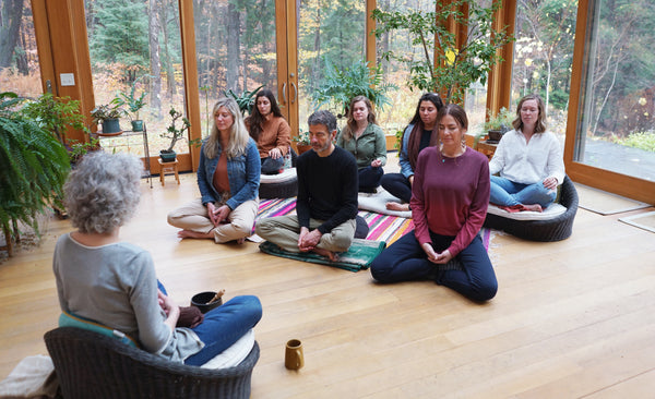 How Meditation Serves Our Biome