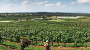 The History New South Wales' Hunter Valley Wine Region