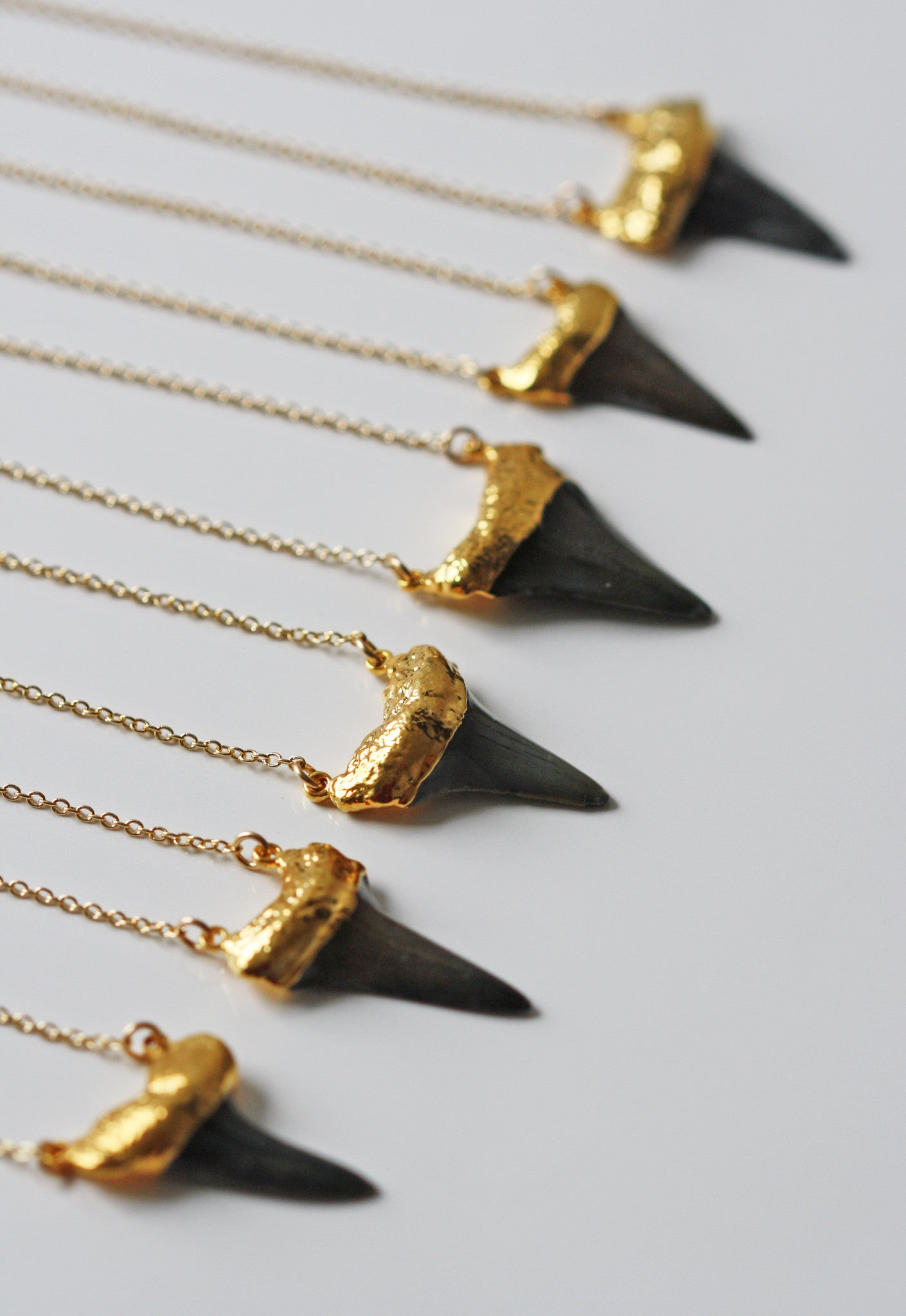 black SHARK tooth necklace - duo