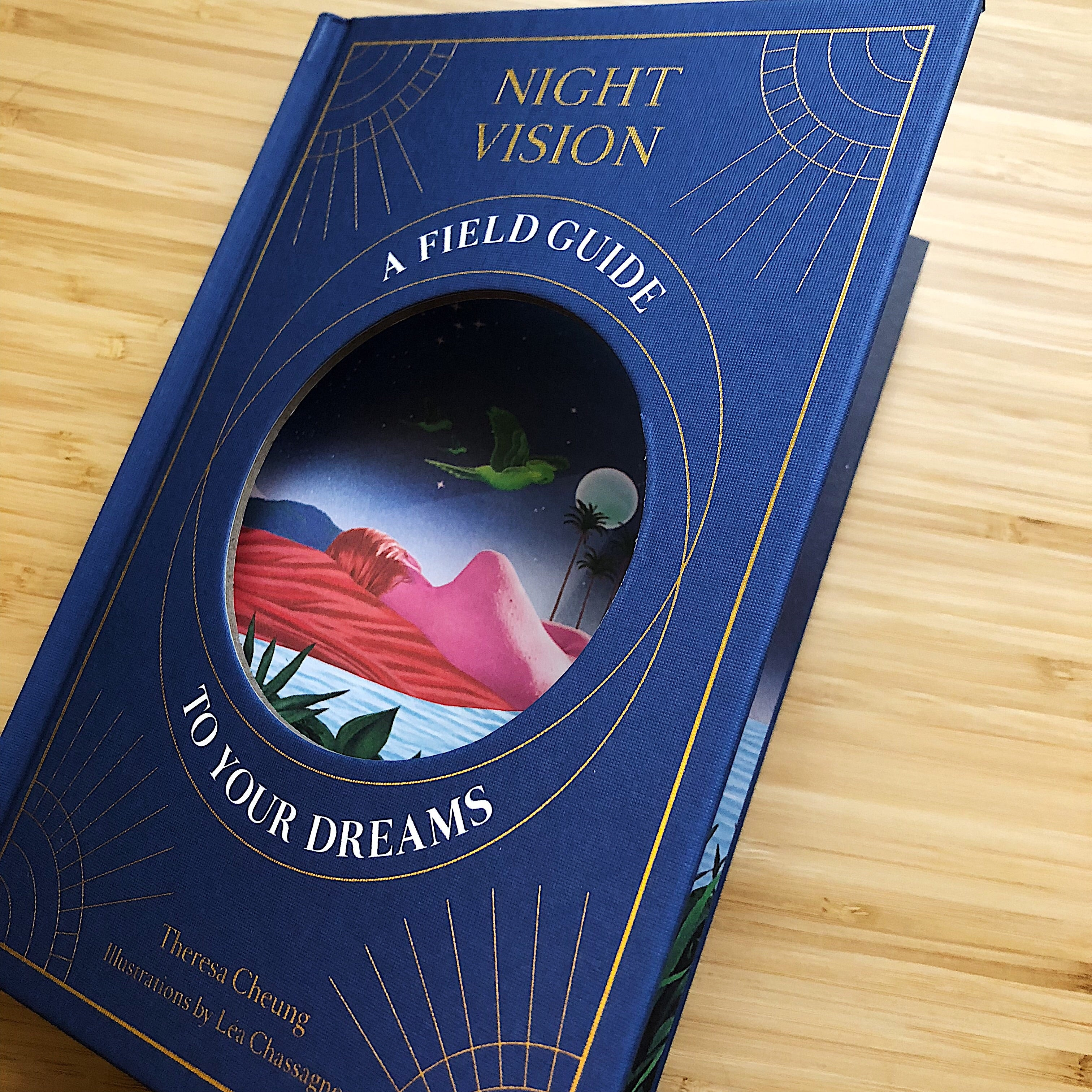 Night Vision: A Field Guide To Your Dreams // By Theresa Cheung