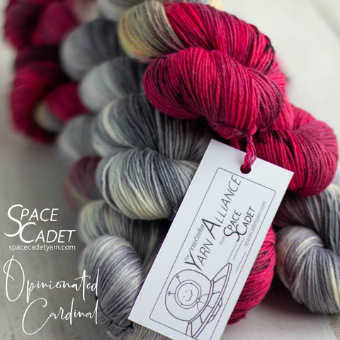 Opinionated Cardinal (Yarn Alliance Exclusive Colourway, Nov 2019)